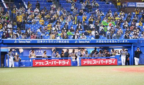 ヤクルトの阪神勝利を喜ぶ阪神矢野監督(左から2番目)ナイン(撮影・足立マーサ)