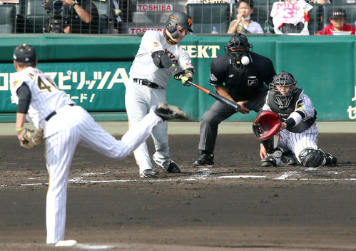 阪神大巨人2回表巨人1社丸は先制中越え本塁打を放つ(撮影・神山純一)