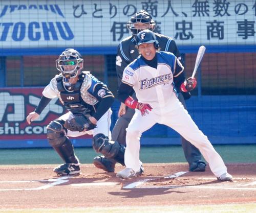 プロ野球合同トライアウトの第3打席、二ゴロに倒れる新庄氏(撮影・江口和貴)
