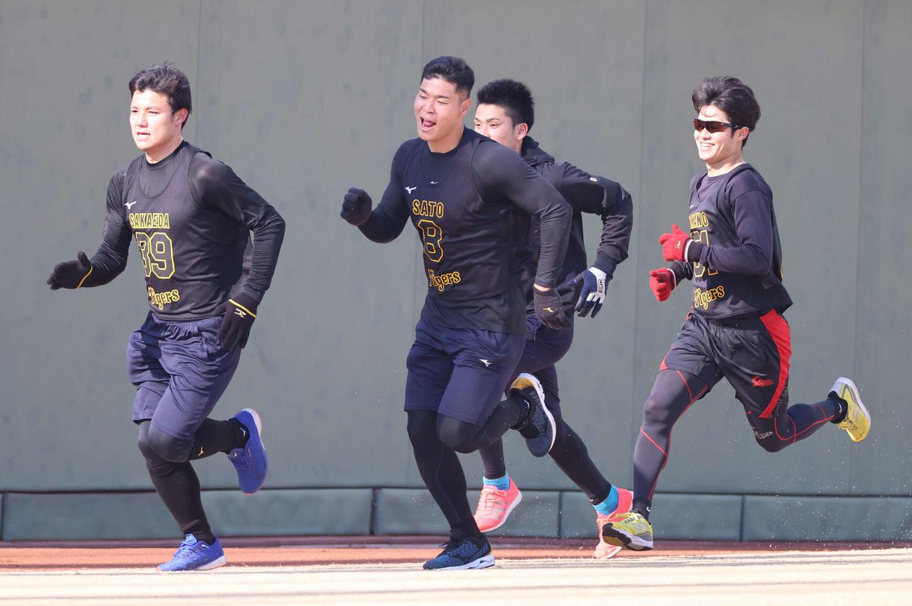 繰り返しのダッシュを行う新人選手たち、左から栄枝、佐藤輝、高寺、中野(撮影・清水貴仁)