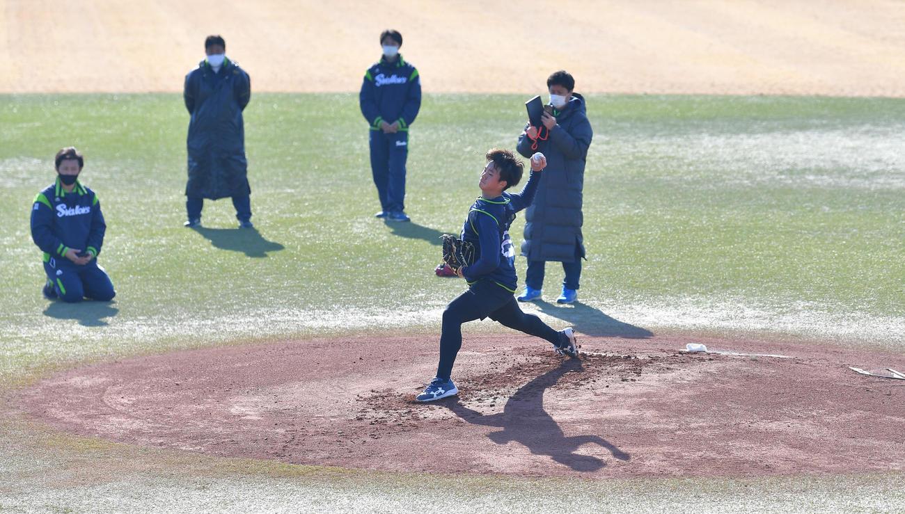 新人合同自主トレでマウンドから投球練習をするヤクルト木沢(代表撮影)