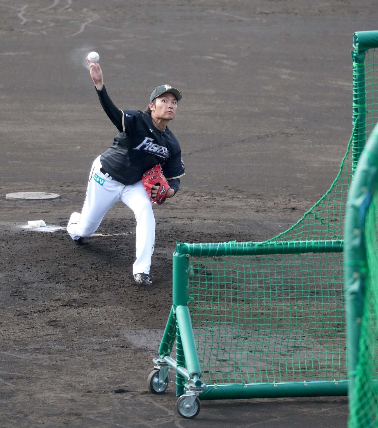打撃投手を務める日本ハム伊藤(撮影・佐藤翔太)
