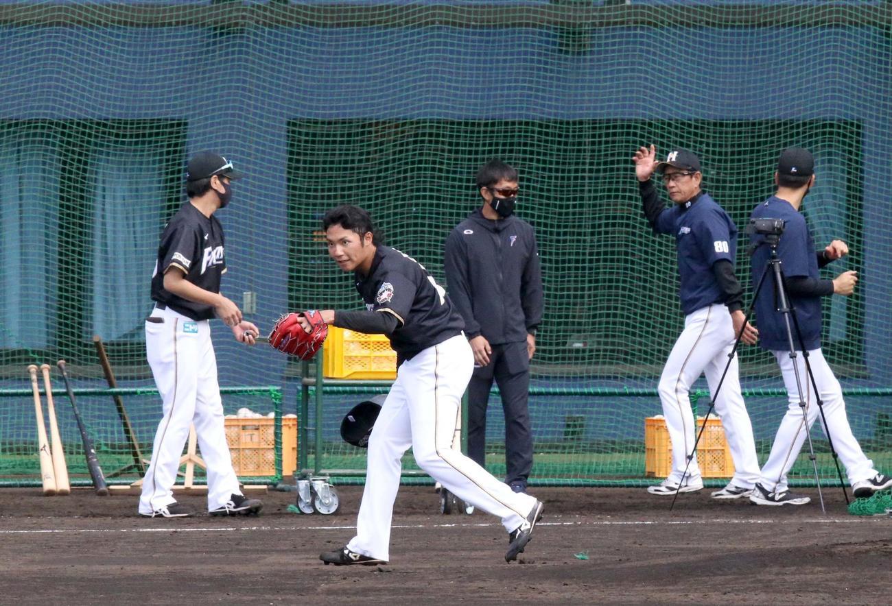 打撃投手を終えお辞儀をしながら引き揚げる日本ハム伊藤(左手前)。右から2人目はそれを見届け練習試合へ向かう栗山監督(撮影・佐藤翔太)