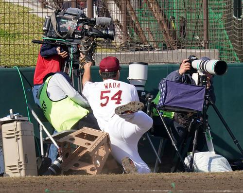 楽天対日本ハム 8回表、ファウルボールを追うもカメラマンに激突する楽天和田(撮影・江口和貴)