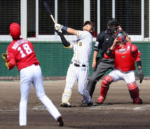 阪神対広島 3回裏阪神2死一塁、佐藤輝は二飛失を放つ、左は森下(撮影・加藤哉)
