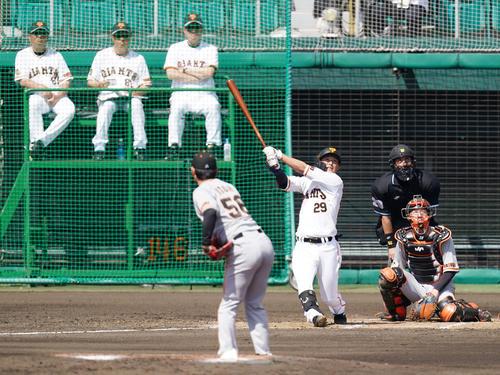 巨人紅白戦 3回裏白組無死、左越えに先制ソロ本塁打を放つ吉川。投手伊藤優(撮影・江口和貴)