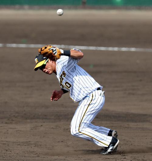 阪神対DeNA 5回表DeNA1死、木浪は神里の打球をエラーする(撮影・加藤哉)