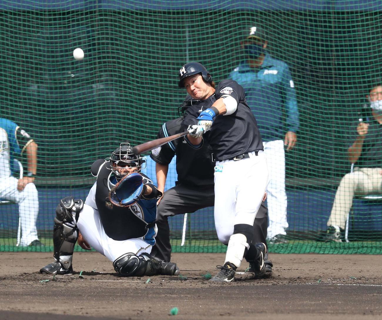 日本ハム紅白戦 3回表2死一、二塁、右中間に3点本塁打を放つ渡辺(撮影・黒川智章)