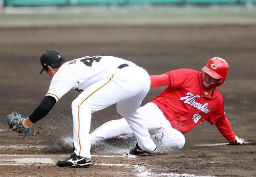 巨人対広島 8回表広島1死一、三塁、暴投するも、本塁を狙う正隨(右)をタッチアウトする畠(撮影・狩俣裕三)