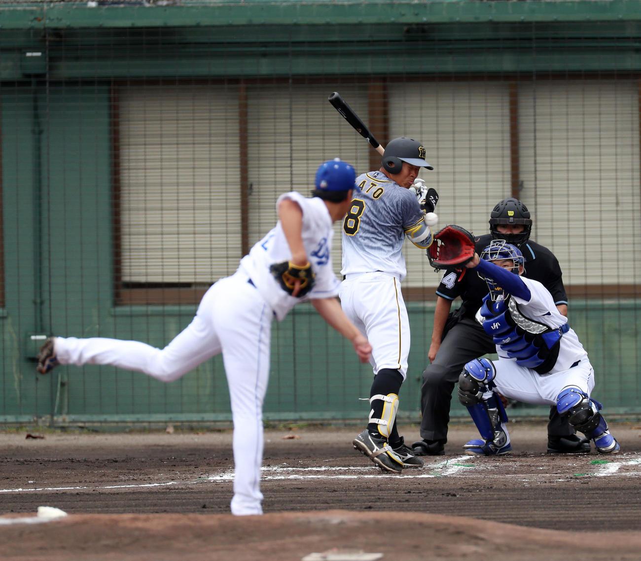 中日対阪神 1回表阪神無死一、二塁、佐藤輝は死球を受ける、左は大野雄(撮影・加藤哉)