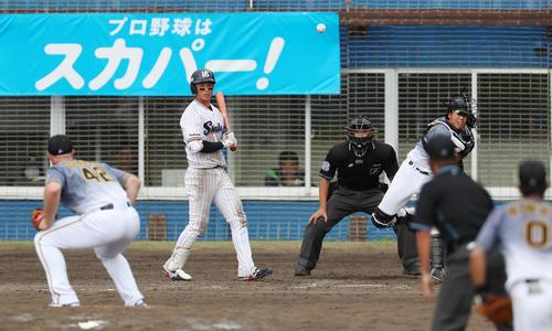 ヤクルト対阪神 5回裏ヤクルト2死一塁、梅野は打者宮本のとき一走の代走並木を刺す(撮影・加藤哉)