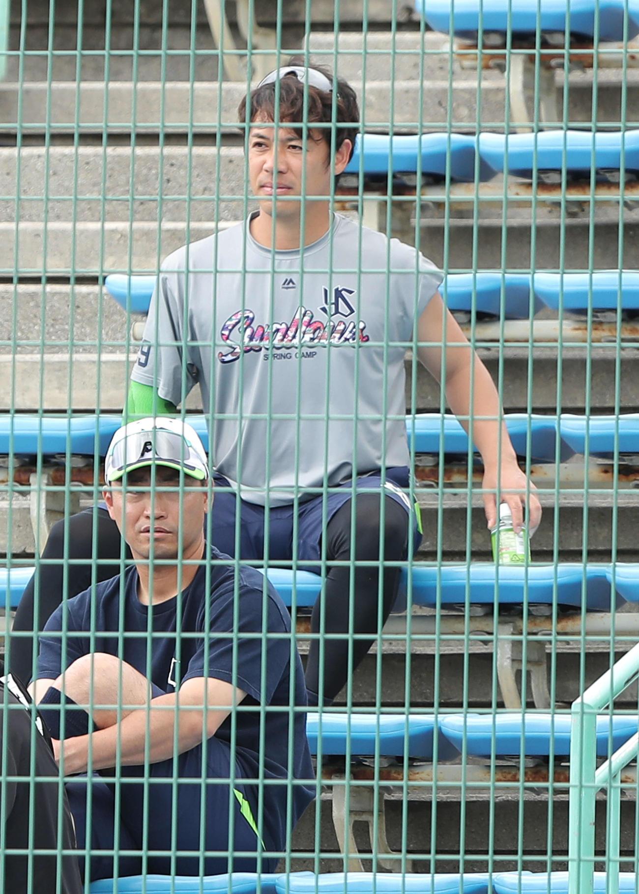 ヤクルト対阪神 一塁側観客席から試合を見る青木(下)と小川(撮影・河田真司)