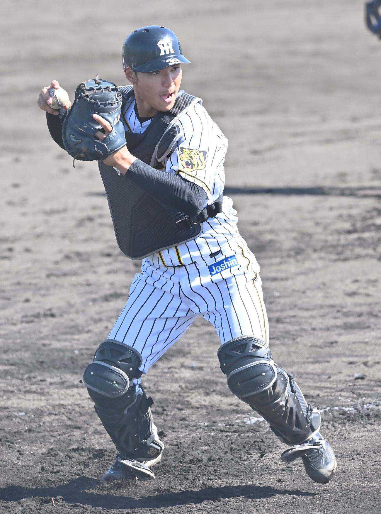 シートノックで一塁へ送球する栄枝(代表撮影)