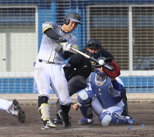 練習試合 DeNA対阪神 本塁打を放つ佐藤輝明