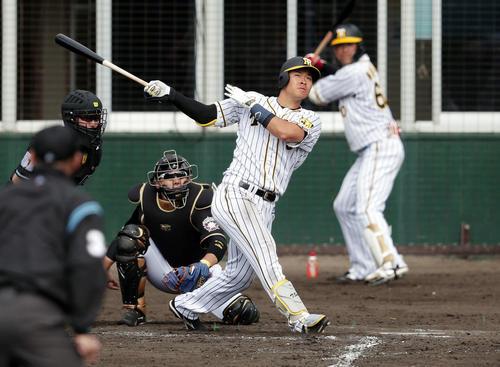 練習試合 阪神対日本ハム 本塁打を放つ佐藤輝明