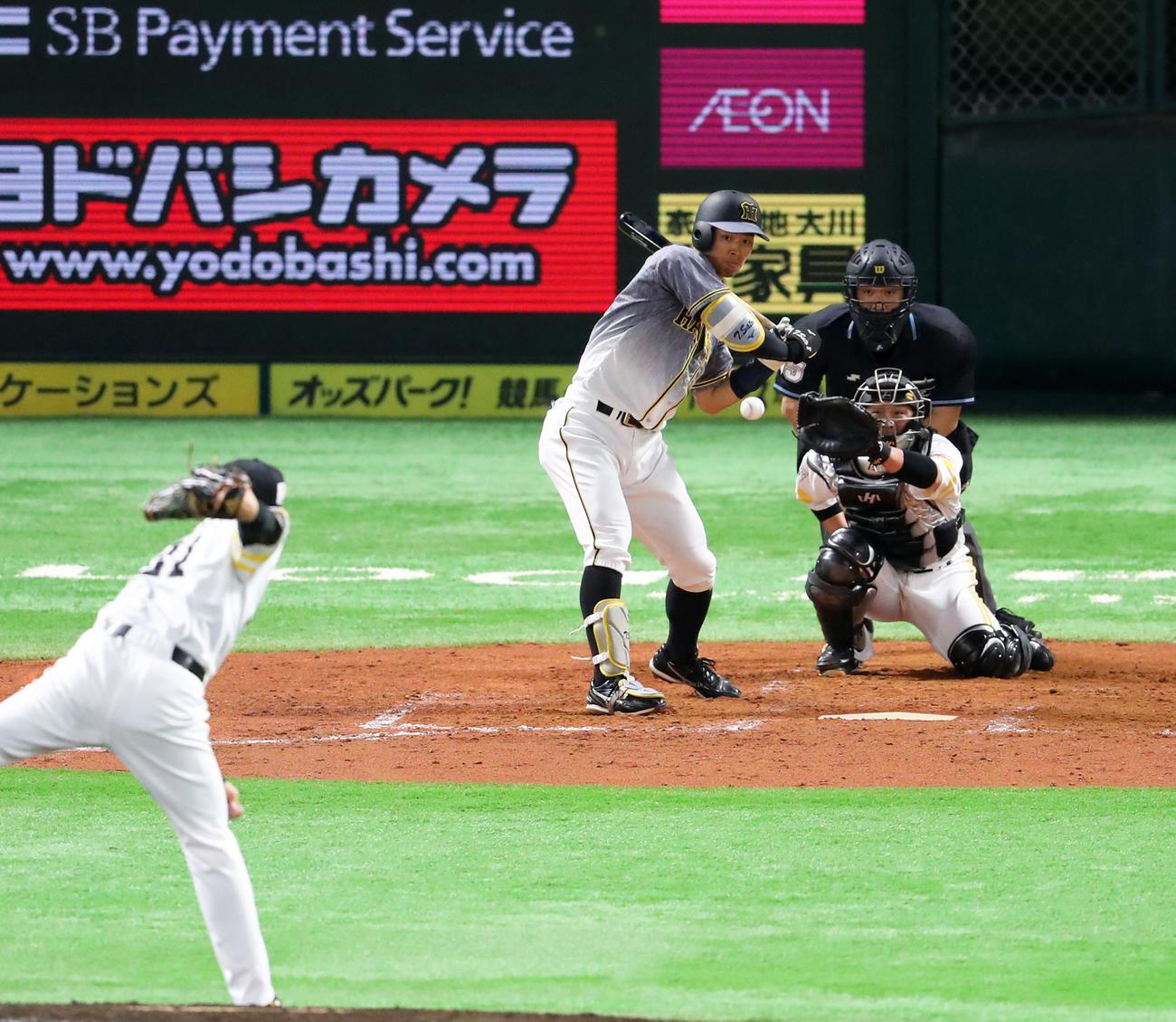 3回表阪神2死、佐藤輝明は11球目のインハイへの直球を見送る(撮影・梅根麻紀)