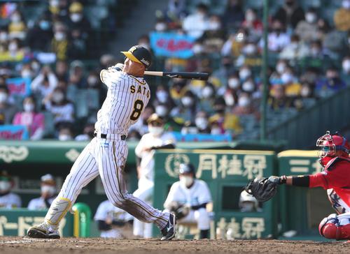 矢野監督「打った瞬間行ったと」佐藤輝明弾を称賛 - プロ野球写真 ...