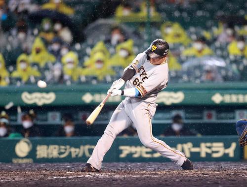 阪神対巨人 5回表巨人無死一塁、香月は2点本塁打を放つ(撮影・浅見桂子)