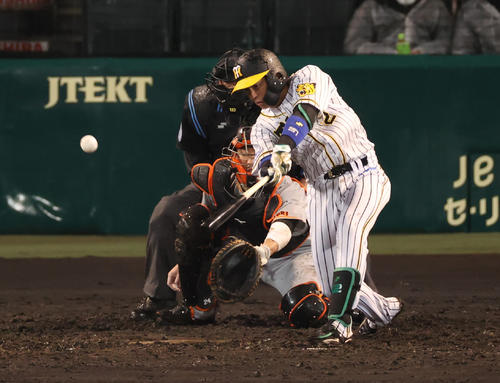 阪神対巨人 3回裏阪神1死二、三塁、右前適時打を放つ梅野(撮影・清水貴仁)
