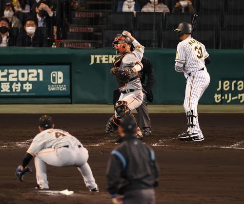 阪神対巨人 3回裏阪神無死一、三塁、打者マルテの時に一塁走者糸原が二盗成功、さらに捕手大城が悪送球で三塁走者近本が先制のホームを踏む(撮影・清水貴仁)