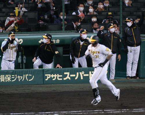 阪神対広島 5回裏阪神無死一塁、矢野監督(右から2人目)は左越え2点本塁打を放ったマルテ(手前)を見ながらガッツポーズする(撮影・上山淳一)