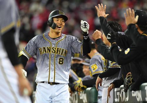 4月1日の広島対阪神 6回表、右越え本塁打を放ち、ナインの迎えに笑顔を見せる佐藤輝明(撮影・岩下翔太)