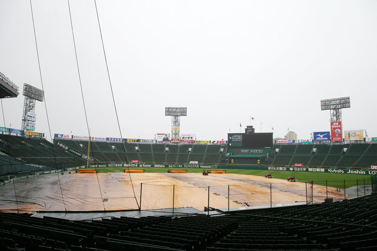 阪神対ヤクルト 朝から雨の甲子園球場(撮影・加藤哉)