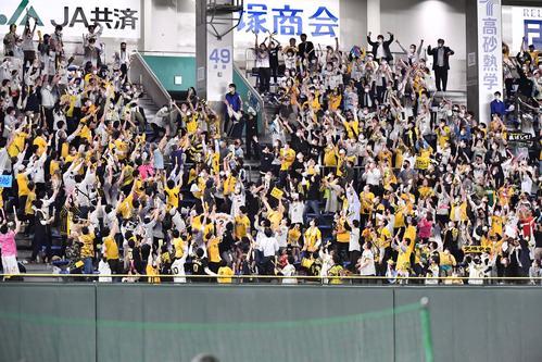 巨人対阪神 6回表阪神2死一塁、左越え2点本塁打を放つ北條の着弾点(撮影・上田博志)