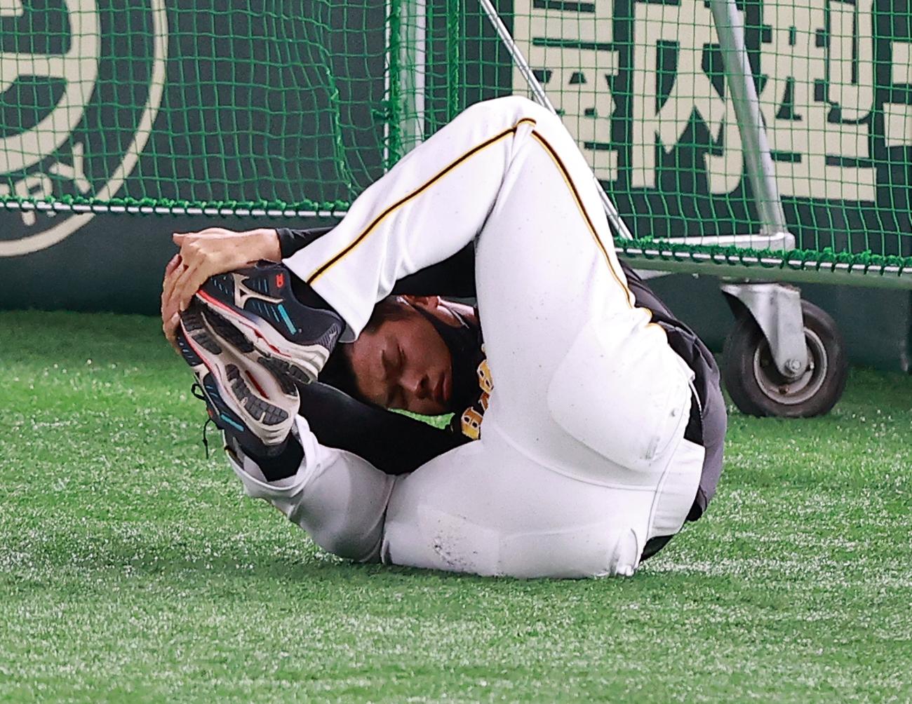 巨人対阪神 試合前練習で、ストレッチしながらゴロゴロと回る佐藤輝(撮影・浅見桂子)