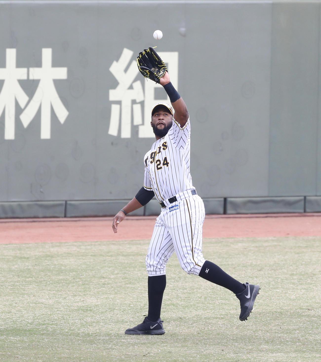 22日の2軍戦でレフトでスタメン出場した阪神ロハスは打球をキャッチ(代表撮影)