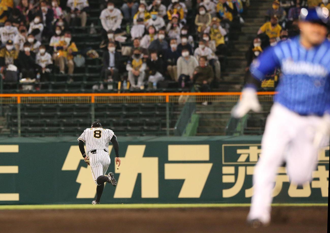 阪神対DeNA 5回表DeNA1死満塁、右翼手佐藤輝(左)は神里の右前打の打球を後逸し、走者一掃の適時失策とする(撮影・上山淳一)