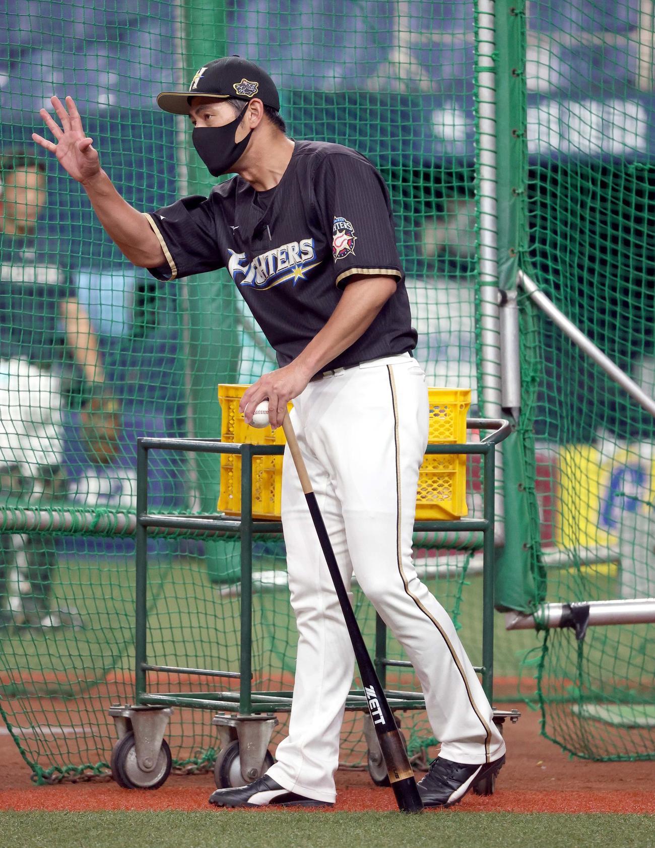 試合前、ノックを打つ日本ハム飯山内野守備コーチ(2020年9月25日)