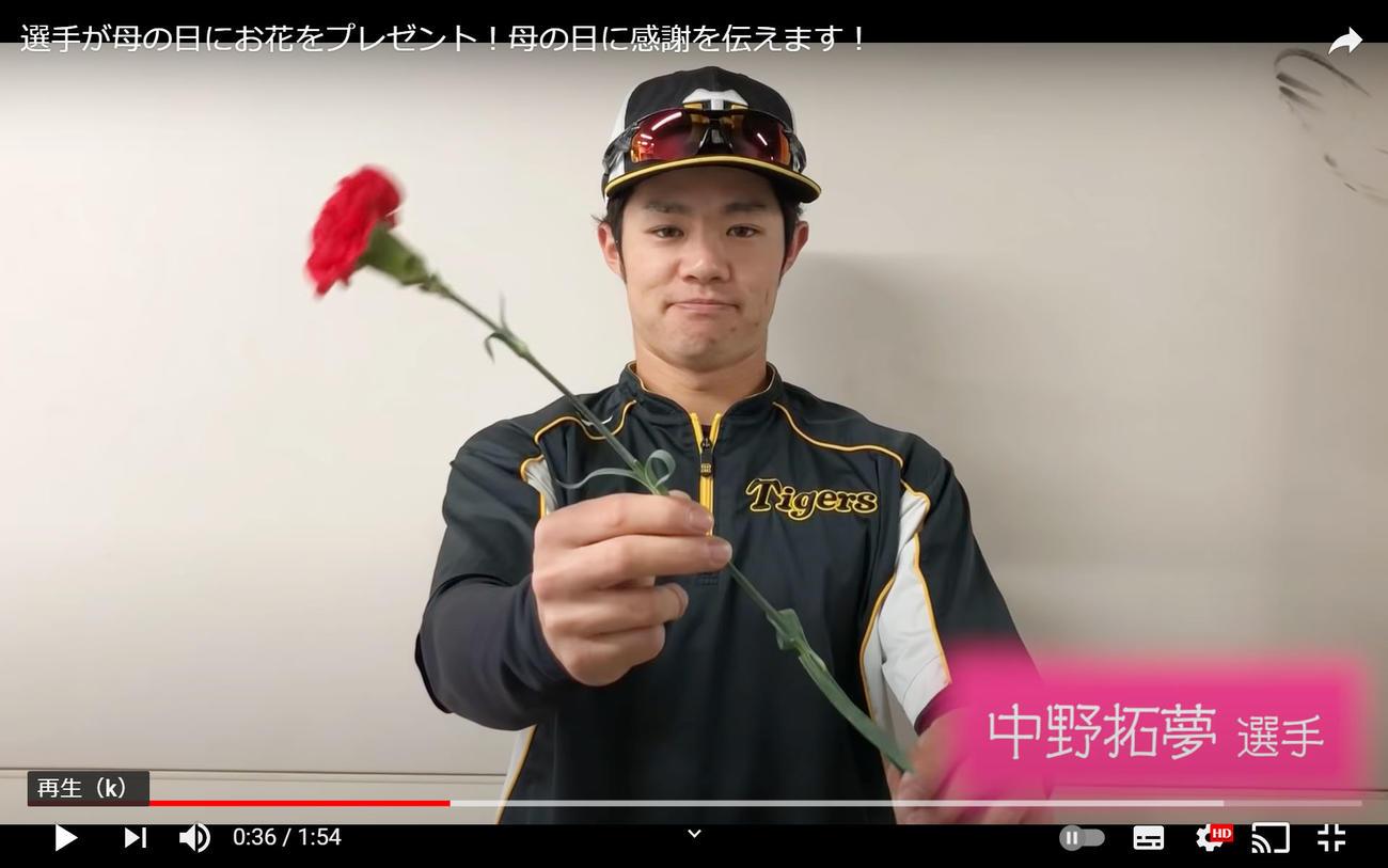「選手が母の日にお花をプレゼント」と題しカーネーションを手にする中野(球団公式ユーチューブより)