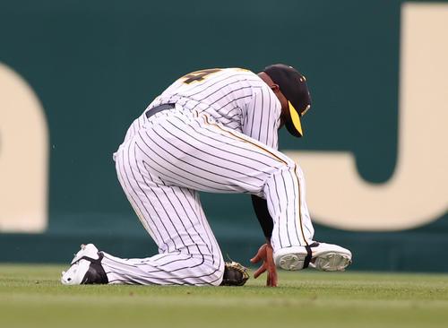 阪神対中日 1回表中日無死、大島の打球を滑り込んで好捕する右翼手ロハス・ジュニア(撮影・清水貴仁)