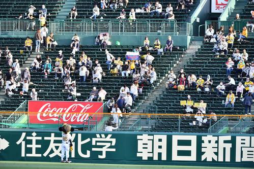 阪神対中日 ライトスタンドで応援する阪神ファン(撮影・上田博志)