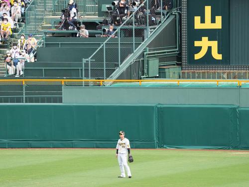 阪神対ソフトバンク 6回の守備から中堅近本がベンチに下がり、陽川が守備につく(撮影・清水貴仁)