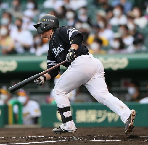 阪神対ソフトバンク 8回表ソフトバンク無死三塁、甲斐は右前適時打を放つ(撮影・上山淳一)