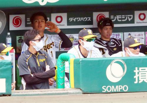 阪神対ソフトバンク 3回裏阪神1死、西純(左から2人目)は代打を出され梅野(右から2人目)と並んで厳しい表情を見せる(撮影・宮崎幸一)