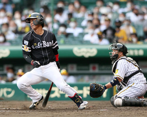 阪神対ソフトバンク 4回表ソフトバンク2死二塁、今宮は左前適時打を放つ(撮影・上山淳一)