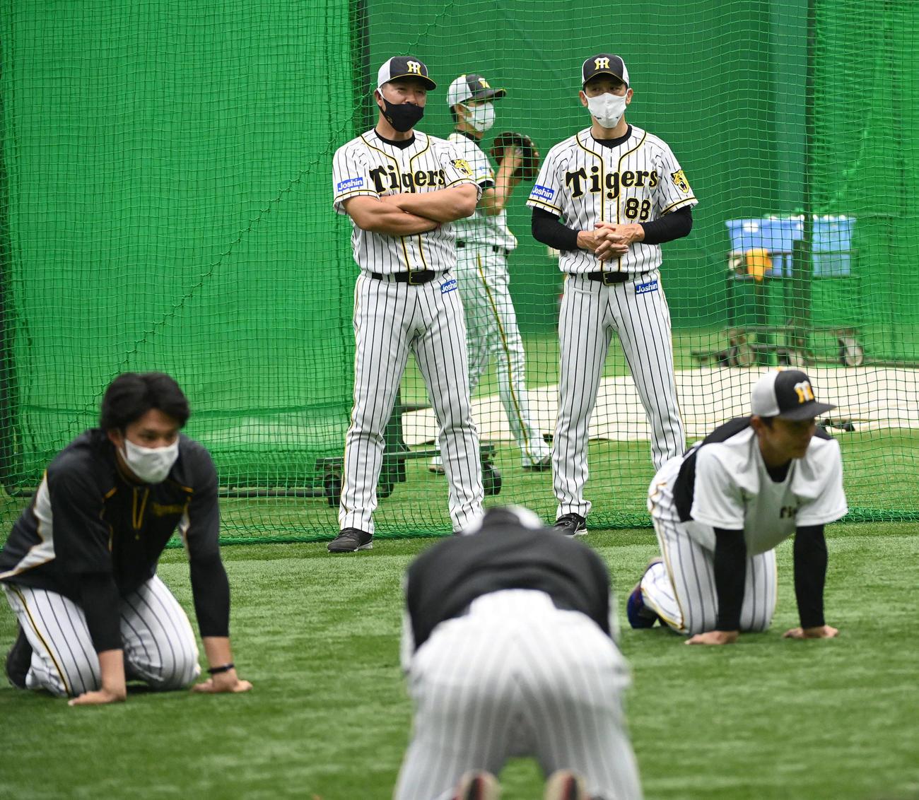 練習を見守る矢野監督(右)と井上コーチ(撮影・前岡正明)