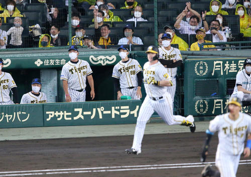 阪神対巨人 3回裏阪神無死満塁、矢野監督(左から3人目)はサンズの右越え満塁本塁打の打球を見る(撮影・上山淳一)