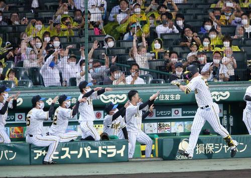 阪神対巨人 3回裏阪神無死満塁、右越え満塁本塁打を放ったサンズ(手前右)を出迎えるナインら(撮影・上山淳一)