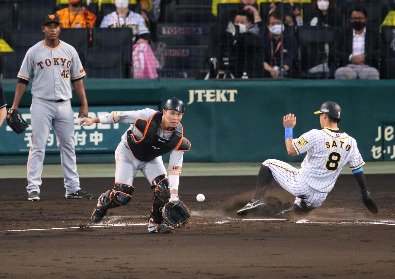 阪神対巨人 2回裏阪神無死二塁、佐藤輝(右)はサンズの左適時二塁打で先制生還する(撮影・上山淳一)