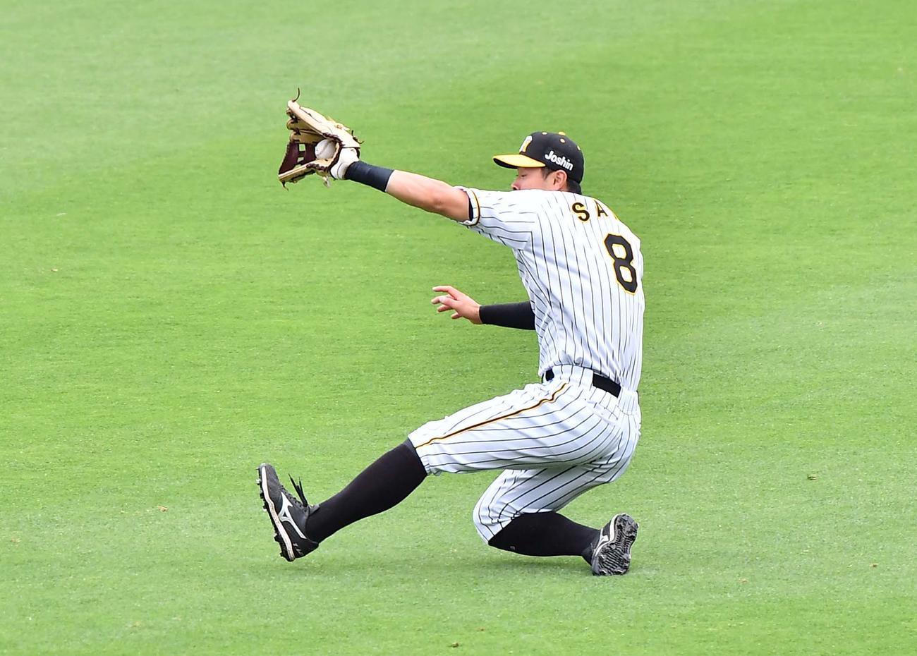 阪神対巨人 1回表巨人2死一、二塁、中島宏之の右飛を好捕する佐藤輝(撮影・上田博志)