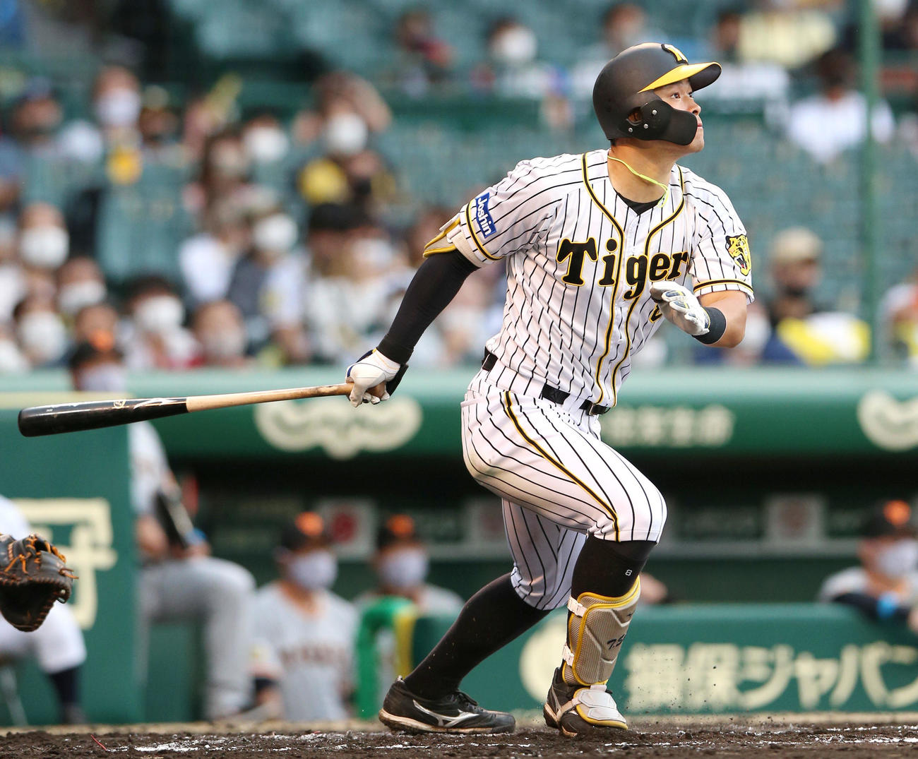 阪神対巨人 6回裏阪神2死、佐藤輝は右越え本塁打を放つ(撮影・上山淳一)