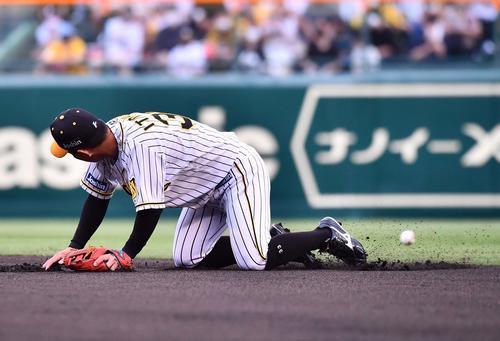 阪神対DeNA 1回表DeNA無死、桑原将志の打球を後逸する糸原(撮影・上田博志)