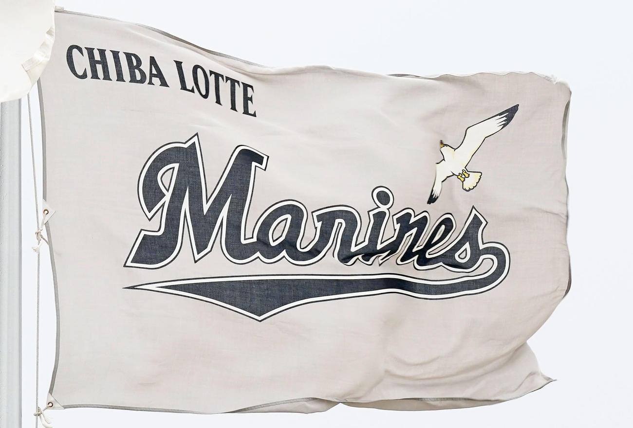 ロッテの球団旗(2021年2月17日撮影)