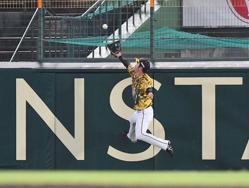 阪神対DeNA 5回表DeNA2死、近本は桑原の打球に飛びつくも捕れず三塁打を許す(撮影・上田博志)