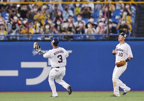 ヤクルト対阪神 2回表阪神無死、大山悠輔の打球の目測を誤る西浦(左)と荒木(撮影・垰建太)