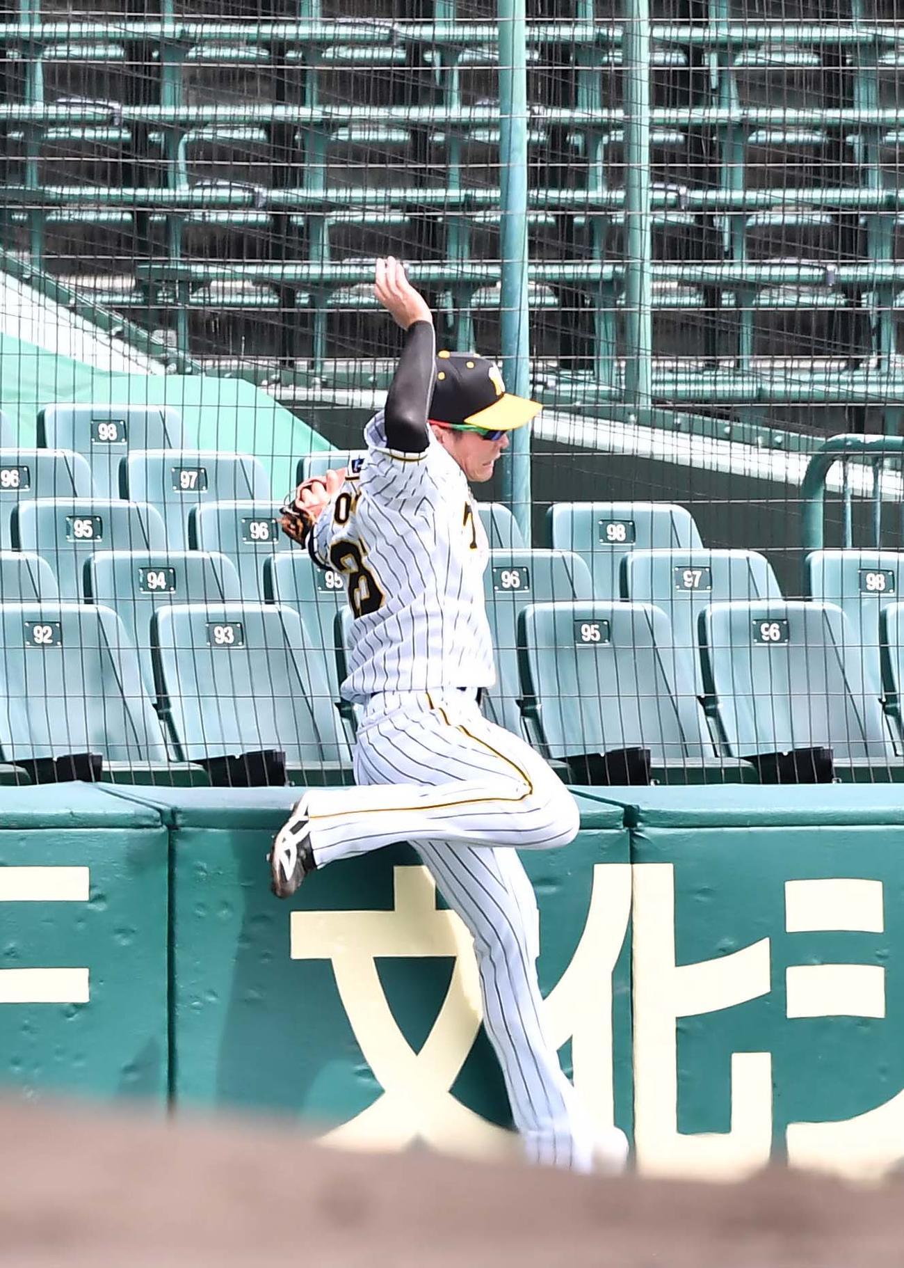 ウエスタン阪神対ソフトバンク 2回表ソフトバンク無死一塁、増田の打球を追い左肩を負傷する北條(撮影・上田博志)